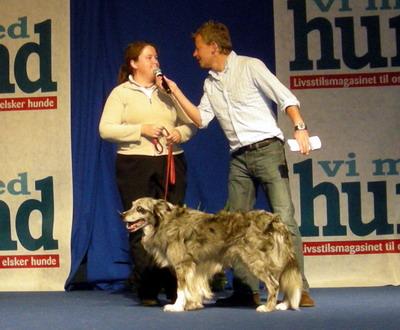 vi med hund